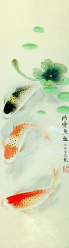 Koi Fish Having Fun in Lotus Pond Wall Scroll close up view